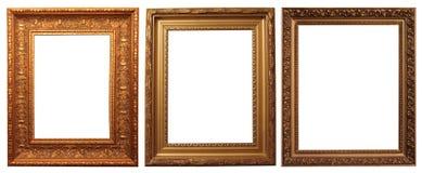 Frames de retrato Fotografia de Stock