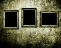 Frames de retrato na parede do grunge Imagem de Stock