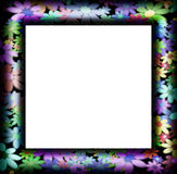 Frames decorated with colorful flowers Stock Photo