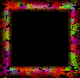 Frames decorated with colorful flowers Royalty Free Stock Photo