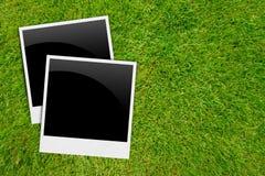 Frames em branco das fotos no fundo da grama Fotos de Stock
