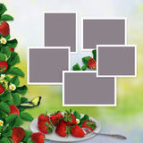 Frames for family photos on a vintage background with a border of leaves and berries of strawberries and a plate with berries Royalty Free Stock Image