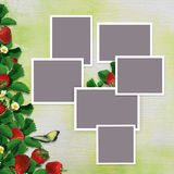 Frames for family photos on a vintage background with a border of leaves and berries of strawberries Stock Photography