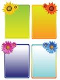 Frames florais Fotografia de Stock Royalty Free