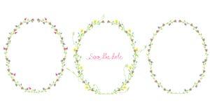 Frames florais ajustados Fotos de Stock Royalty Free