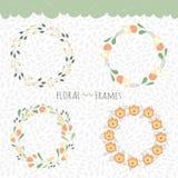 Frames florais ajustados Imagens de Stock Royalty Free