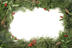 Frames greenery and decorations Royalty Free Stock Images