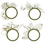 frames met bloemen Stock Afbeeldingen