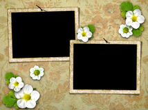 Frames on the old wall Stock Images