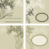 Frames - orchid flowers Stock Images