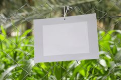 Frames of paper hanging in the fence of fodder farms stock image