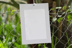 Frames of paper hanging in the fence of fodder farms stock photo