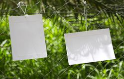 Frames of paper hanging in the fence of fodder farms royalty free stock photo