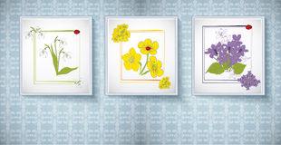 Frames for picture with floral ornaments Royalty Free Stock Image