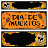 Frames with sugar skull of floral background Royalty Free Stock Image