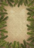 Framework from branches of a Christmas tree Stock Photography