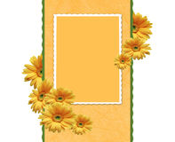 Framework with chrysanthemums Royalty Free Stock Image