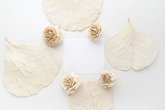 Framework with dry flowers on white background. Flat lay, overhead view Royalty Free Stock Images