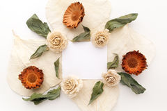 Framework with dry flowers on white background. Flat lay, overhead view Stock Photos