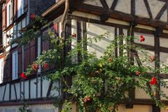 Framework facade with window shutters. On a sunny summer morning in south germany city schwaebeisch gmuend stock images