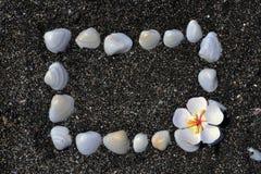 Framework. Frame of shells on the beach near the sea Stock Image