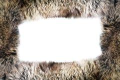 Framework from fur. Stock Photos