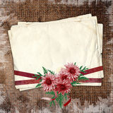 Framework for invitations. With ribbons and chrysanthemums Royalty Free Stock Images