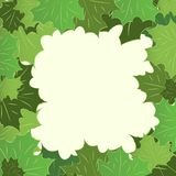 Framework from maple leaves Royalty Free Stock Photo