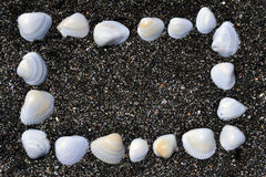Framework of mussels. Frame of shells on the sand at the beach Stock Image