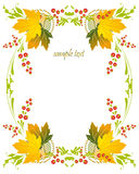 Framework with a pattern from autumn leaves and be Royalty Free Stock Photo