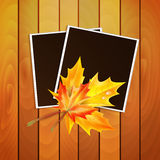 Framework for a photo  decorated autumn Royalty Free Stock Photos