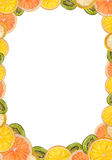 Framework of sliced citrus fruits. Framework sliced ​​citrus lemons, oranges, kiwi and grapefruit royalty free stock photo
