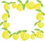 Framework from solar lemons Royalty Free Stock Photo