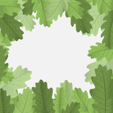 Framework With Leaves Royalty Free Stock Photos