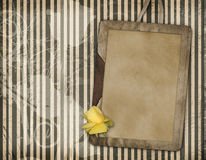 Framework with yellow rose Stock Images