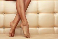 framför den härliga kvinnlign isolerade ben 3d välformad white Royaltyfri Fotografi