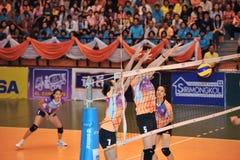 Framgång som blockerar bollen i chaleng för volleybollspelare Arkivfoto