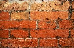 Frammento 1 della parete Fotografie Stock Libere da Diritti