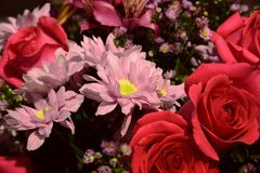 frammento del mazzo con il primo piano delle rose Immagine Stock Libera da Diritti