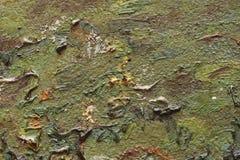 Frammento della pittura a olio Immagini Stock
