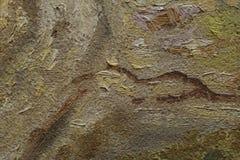Frammento della pittura a olio come immagine Fotografie Stock