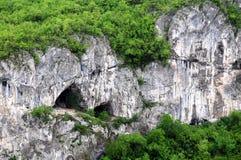 Frammento della roccia del calcare Fotografia Stock Libera da Diritti