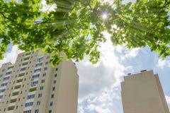 Frammento delle costruzioni di appartamento contro dei rami ed il sole di albero Immagine Stock Libera da Diritti
