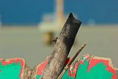 Frammento di legno Immagine Stock