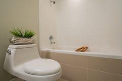 Frammento di un bagno di lusso Immagini Stock