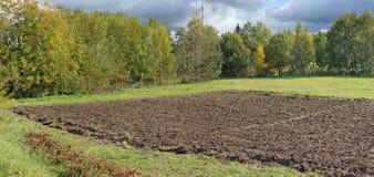 Frammento di un campo arato del ` s dell'agricoltore in un prato di autunno della foresta Immagine Stock