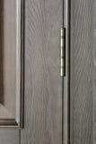 Frammento di una porta di legno della quercia Fotografia Stock Libera da Diritti