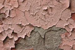 Frammento di vecchia parete esterna con colore rosa di pelatura incrinato del gesso fotografie stock