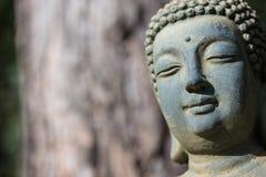 Framsida av Buddha - stående, höger ingate Fotografering för Bildbyråer