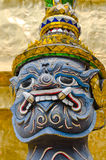 Framsida av jätten. Royaltyfri Fotografi